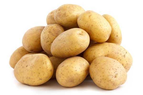 chữa bệnh chàm tay bằng khoai tây