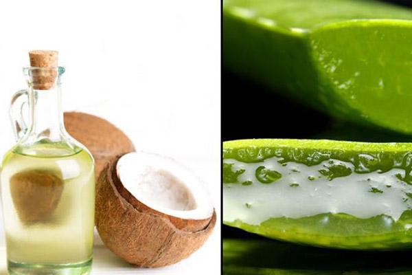 chữa bệnh chàm bằng dầu dừa